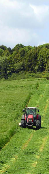Haylage mowing near Beacon Hill.